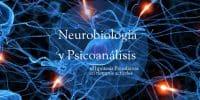 Psicoanálisis y Neurobiología Psicología. Psicologos Tenerife