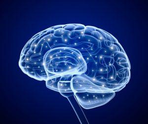 Neurobiología y Psicoanálisis